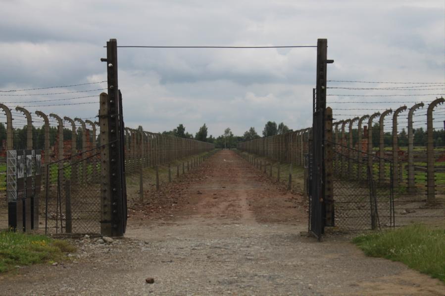 Untitled, Auschwitz, 2014.