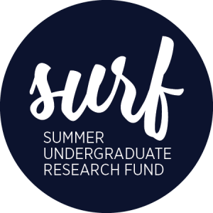 SURF logo 2