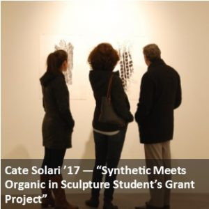 Cate Solari Exhibition Article