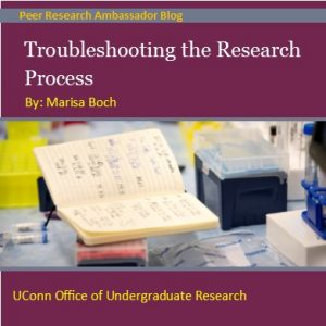 Troubleshooting the Research Process Blog Post
