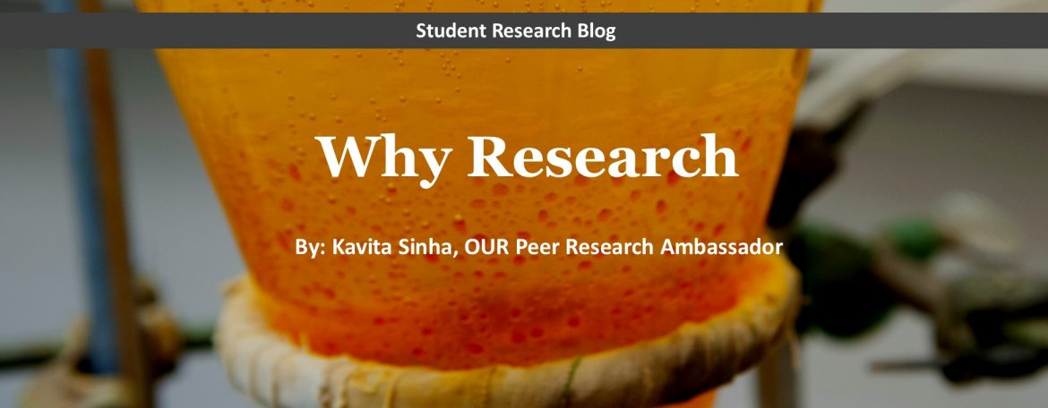 """""""Why Research"""" student blog post"""