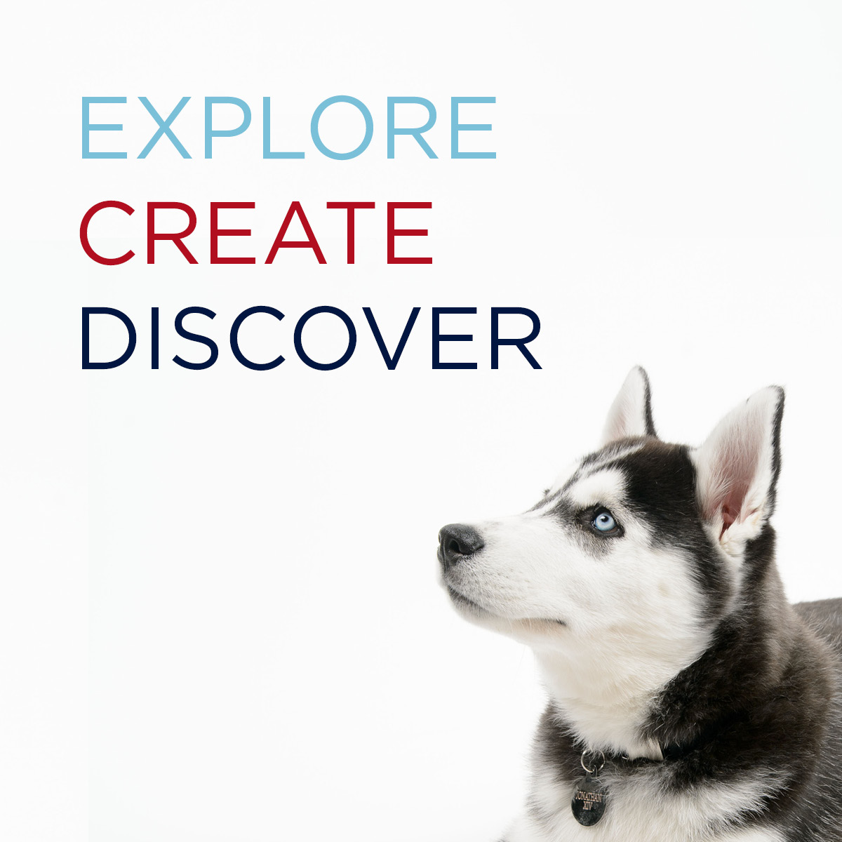 Explore. Create. Discover. Learn about undergraduate research!