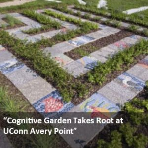 Link to UConn Today Article. Cognitive Garden Takes Root at UConn Avery Point.
