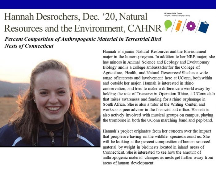 Hannah Desrochers Bio.