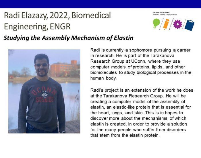 IDEA Grant Recipient Radi Elazazy Bio.
