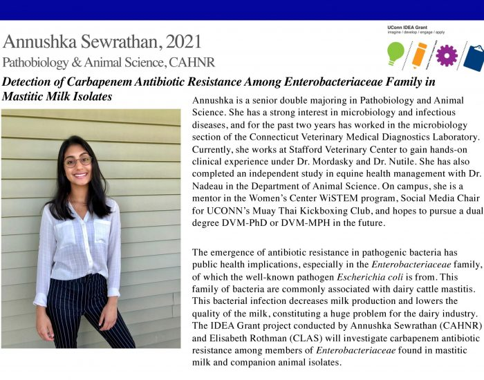 UConn IDEA Grant Recipient Annushka Sewrathan Bio.