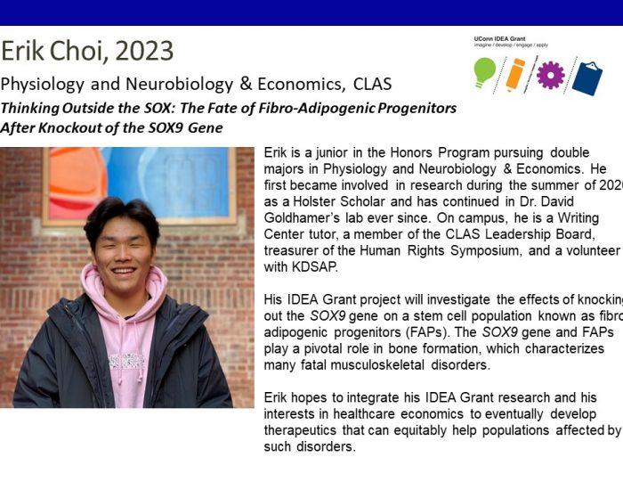 UConn IDEA Grant Recipient Erik Choi Bio.