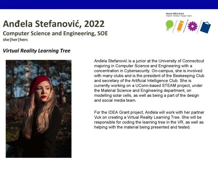 UConn IDEA Grant Recipient Andela Stefanovic Bio.
