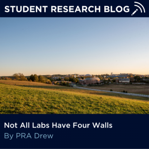Not All Labs Have Four Walls. By PRA Drew.