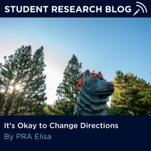 It's Okay to Change Directions. By PRA Elisa.